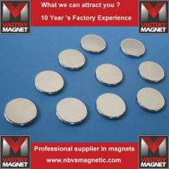 NdFeB speaker magnets