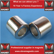 ring magnet 12