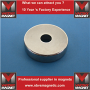 ring magnet 14